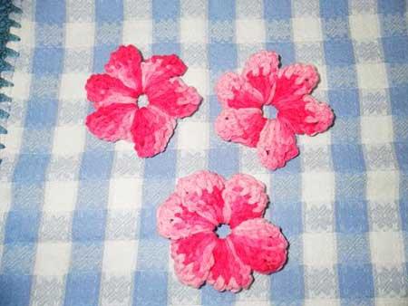 Flores Catavento