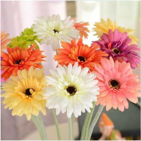 sugestões de flores