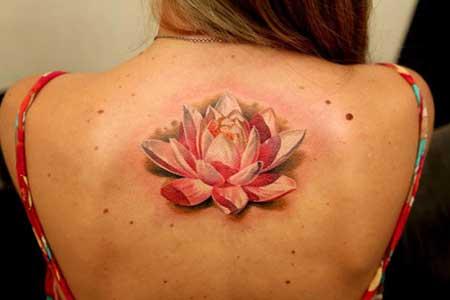 Tatuagem De Flor De Lótus Fotos Dicas Imagens Tattoo