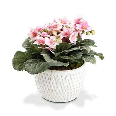 flores em vaso