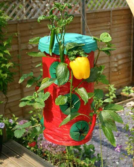 ideias de jardinismo