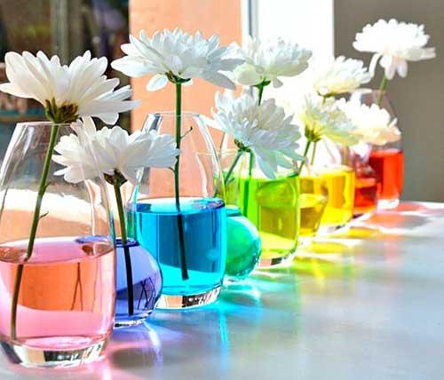 com água colorida