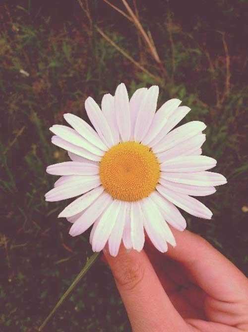 foto do tumblr