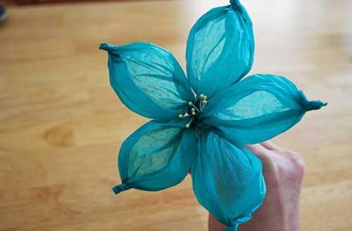 em flor