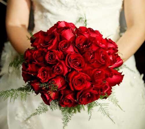 case-se hoje