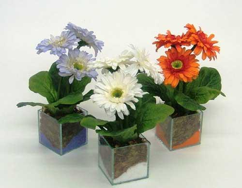 com flores de várias cores