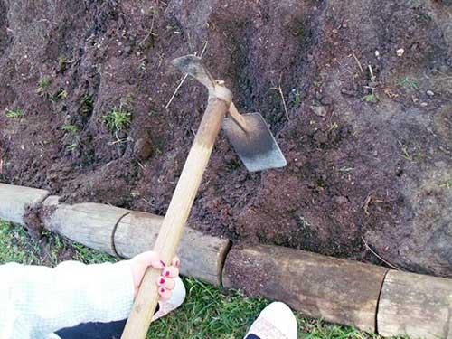 preparando a terra